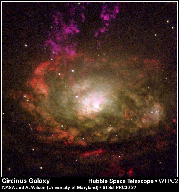 Circinus Galaxy,Circinus Constellation,Spiral Galaxy